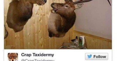 I told you it was hunting season Doreen!