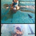 Brown Dress Swimming Pool