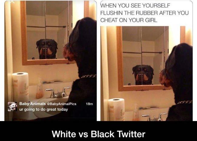 white-vs-black-twitter-pics-9