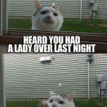 Bro Cat – Meme