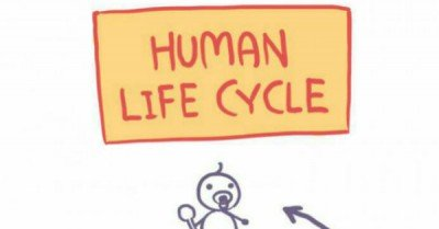 Human Life Cycle – comic via Owlturd
