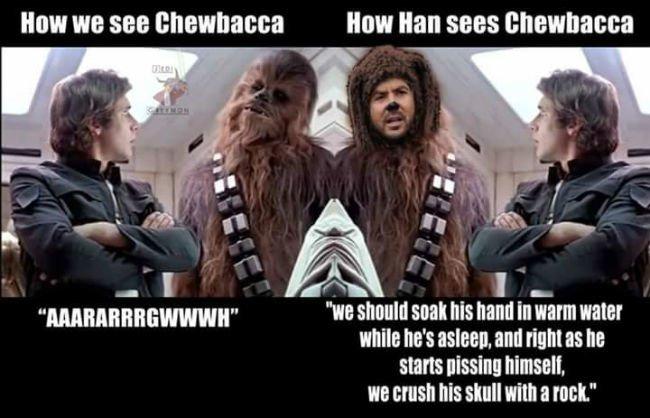 how-we-see-chewbacca-vs-how-han-sees-chewbacca