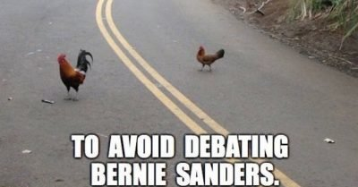 Why did Chicken Trump and Chicken Hillary cross the road?